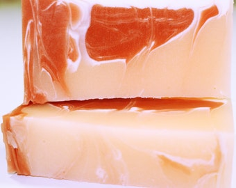 Southwest Swirl bath soap with a scent similar to Fruit Stripe gum