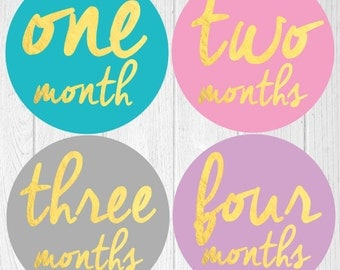 Gold Baby Month Stickers, Monthly Baby Stickers, Bodysuit Stickers, Monthly Milestone Stickers, Baby Monthly Stickers, Girls