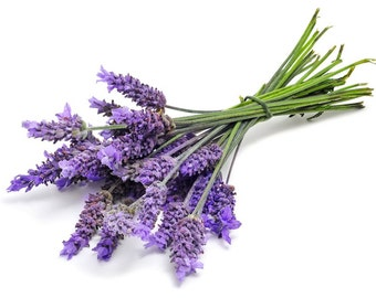 Lavender 40/42 Pure Organic Essential Oil (Full Strength) 4 or 8 oz size