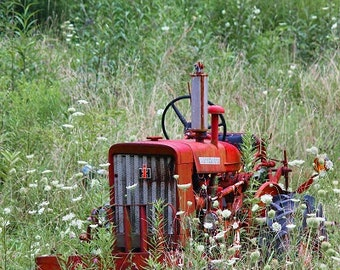 It's Been A While (Vintage Red Farmall Tractor photograph) (tractor) (farmall) (vintage) (red) (old)
