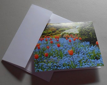 PHOTO NOTECARDS - Blank note cards with original photography, buy one or a set - Great gift Idea!