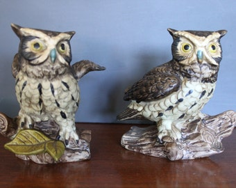 Pair of Ceramic Owl Statues, Norleans Owl Statues, Realistic Owl Figurines for Your Cabin, Teacher or Professor Gift