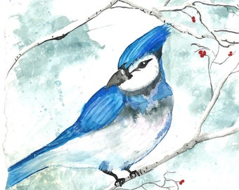 Blue Jay watercolor wall art