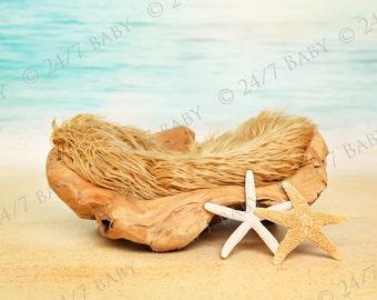 Newborn Digital Backdrop Instant Download Newborn Baby Photography Driftwood Beach Ocean Scene Prop Starfish