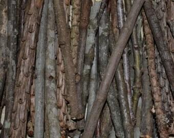 Natural Sticks for Crafts, twigs 4 6 10 12 inch, diy wood supplies bark branch wedding table center piece centerpiece fairy garden ornament