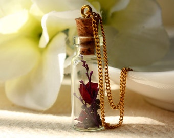 Bottle / necklace / purple / Dried Flowers, Rose, Real Flower Necklace, Cool Necklace, Plant Necklace, terrarium, botanical, gift for her
