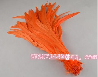 100  pcs  12-14  inch   rooster feathers