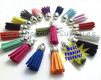 Tassels - Small Tassels - 10 or 25 Tassel Charms - Silver Cap, Assorted Color Mix - Jewelry Tassels - Keychain Tassel - Wine Charm - TC-S001