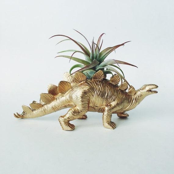 Large Gold Stegosaurus Dino Planter With Air Plant Dinosaur