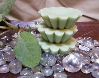 Mediterranean Fig and Basil Soy Wax Tart