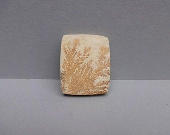 Psilomelane- Dendritic limestone -Tree Agate cabochon 30x24 mm