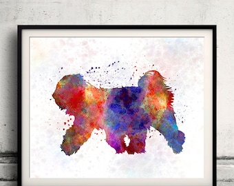 Tibetan Terrier 01 in watercolor - Fine Art Print Glicee Poster Decor Home Watercolor Illustration - SKU 1387