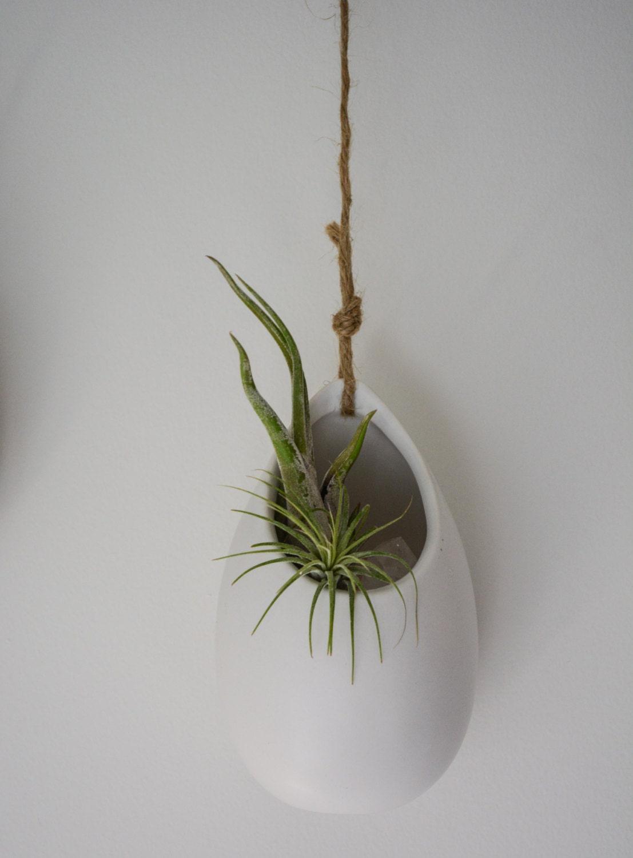 hanging air plant pod ceramic terrarium kit. Black Bedroom Furniture Sets. Home Design Ideas