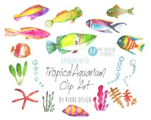Fish Watercolor Clip art, Tropical Fish, Watercolour, Fish Clip art, Hand Painted Watercolor Clip art collection, Summer