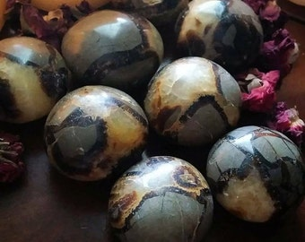 "Septarian Stones~""Dragon Stone""~ Enhances privacy ~ Grounding ~ Shielding ~Shamanic~Mediatation~ Massage Stones~Alter~Collection"