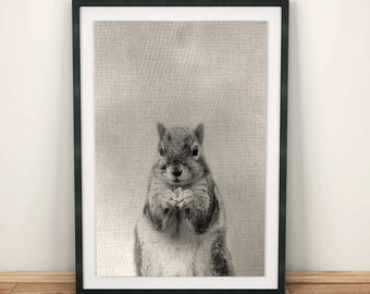 Squirrel prints, cute woodland animal prints, animal prints, Woodlands Decor, Wall Art, Black and White Animal Print, Printable Art