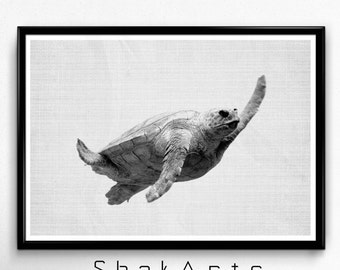 Turtle Print, Beach Wall Decal, Modern Decor, Ocean Art Sea Art, Nautical Wall Art, Ocean Animals, Masculine Decor, Turtle Decal, Sea Turtle
