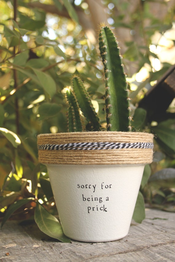 4 sorry for being a prick cactus indoor and outdoor for Indoor plant gift ideas