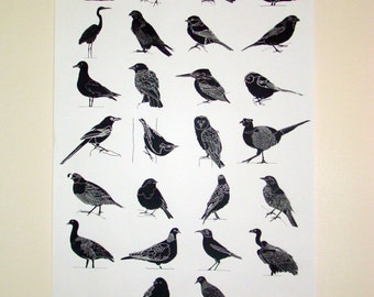 A1 Large Screen Print 'Birds' Hand Printed Silkscreen Illustration Poster (Limited Edition)