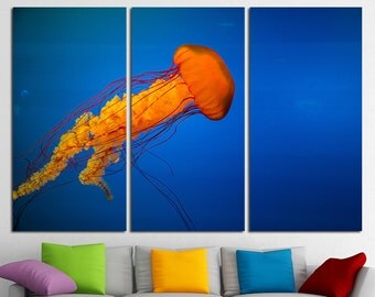 Medusa Large Canvas Print Sea Jelly Photo Medusa Art Sea Jelly Canvas Medusa Wall Art Medusa Print Medusa Poster Medusa Photo Ocean Art Sea