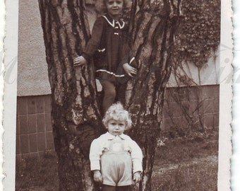 Vintage Photo - Cute girls on a tree - Little girls photo - Cute children - Vintage Snapshot - Polish Photo - Children photo - 1940s Photo
