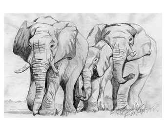 Elephant Art, Art Prints, Wall Art, Prints, Wall Art Decor, Pencil Drawing, Prints