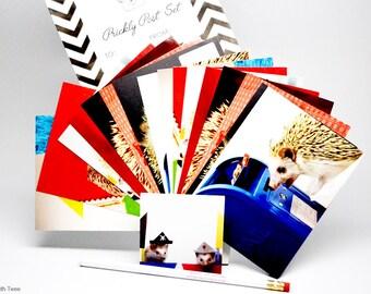 Prickly Post Set, Photographic Hedgehog Postcard Stationery Gift Set