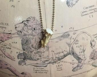 Naturally-shed Deer Antler Tip Necklace