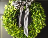 """16"""" Preserved Boxwood Wreaths, Perfect for Christmas Weddings. 16 inch"""