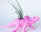 Dinosasur Planter with Air Plant Room Decor, College Dorm Ornament, Plants and Edibles, Pink Repurposed Toy