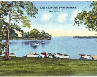 Vintage Vermont Postcard - Lake Champlain from North Hero (Unused)