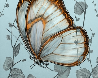 BUTTERFLY Print  - butterfly art print -  butterflies giclee print -  orange - blue - Yellow - COLOR - plum