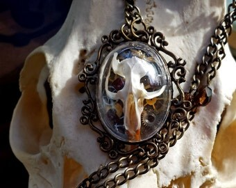 Real Rat Skull Necklace Steampunk Shadowbox - Edgar in Brass - goth jewelry