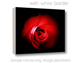 SALE Red & Black Wall Art-Rose Photography-Dramatic Wall Art-Red Rose Canvas-Square Canvas Wrap-Elegant Wall Decor-Floral Art-Statement Art