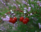 small clip-on earrings with natural red seeds - botanical jewelry - eco friendly