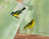 Hello Birdie - A5 Stationery - 12, 24 or 48 sheets