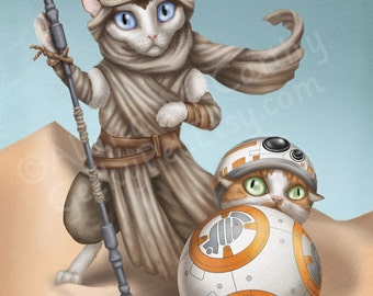 BB-8 and Rey Cats - Star Wars the Force Awakens