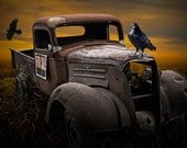 Raven Hood Ornament on Old Vintage Chevy Pickup Truck For Sale No.01582 A Fine Art Auto Surreal Fantasy Photograph