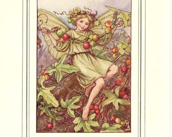 The WHITE BRYONY FAIRY Vintage Book Plate Original Page c. 1940 Book of the Flower Fairies Cicely M Barker
