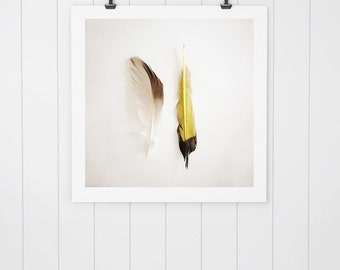 Feather photo, feather art, nature photo, wall art, nature print, yellow feather, feather photography, feather print, home decor, minimalist