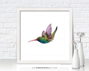 HUMMINGBIRD Painting, Hummingbird Print, Bird Greeting Cards, Original Watercolor Painting, Wall Decor, Bird Wall Art, Swooping Broad Bill
