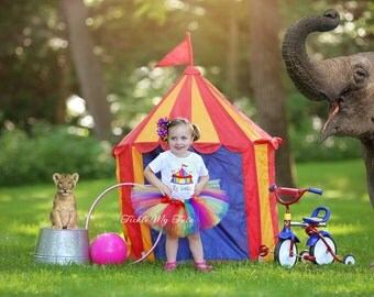 Under the Big Top Rainbow Circus Tent Carnival Themed Birthday Tutu Outfit-Carnival Party Outfit-Circus Party Outfit *Bow NOT Included*
