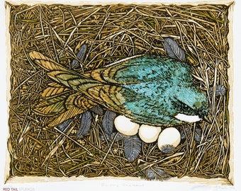 "Raising Swallows Fine Art Linocut Relief Print, Original Art, 10-Color 9"" x 11"", subdued Woodland Color, Nest Box, Tree Swallow conservation"