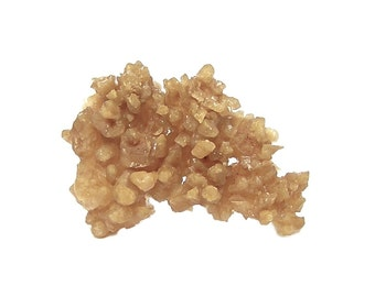 Aragonite Orange Anemone crystalline cave cluster earth Mineral Specimen Geology Sample mined in Mexico for a gemstone rockhound collection