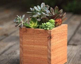 "Cedar Succulent Planter Box (Medium) 5x5x5.5"""