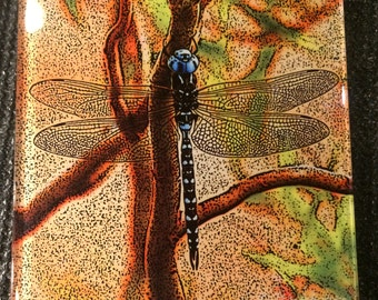 Glass Coaster or Tile - Blue Dragonfly - 4.25in x 4.25in