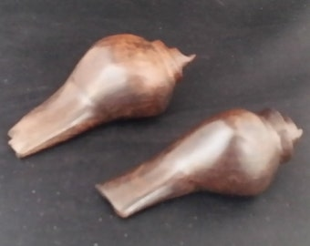 Pair of Ironwood Seashells
