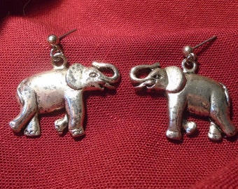 Elephant's earings (099)