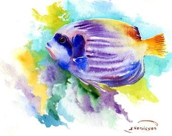 Coral Fish, Angelfish, 10 X 8 in, original watercolor painting google