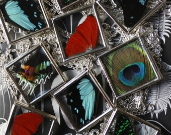 Real Insect Wing and Feather Pendants. Necklaces. Double Sided Lockets.